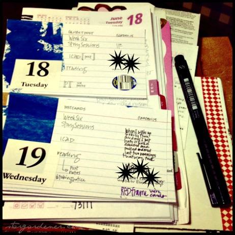 19 calendar
