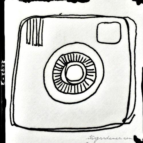notice camera
